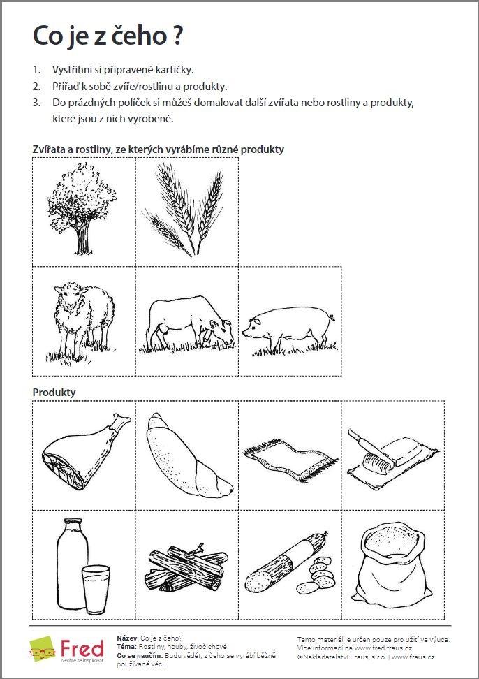 Ilustrovane Pracovni Listy A Vyukove Komiksy Pro Nejmensi Fred